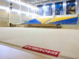 """""""Zhemchuzhina"""" Artistic Gimnastics Center"""