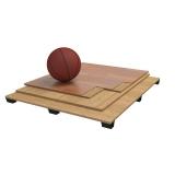 Sports parquet floor Pro