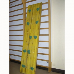 Climbing wooden panel S00794