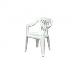 Judges plastic chair S02108